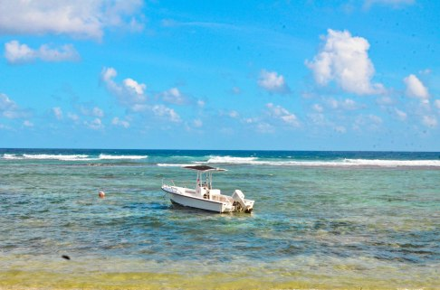 Grand Cayman, Cayman Islands where May Hen conducted research in 2017. A stark contrast from chilly Cambridge